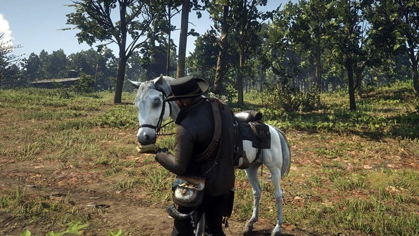 Arthur alimentando a uno de sus caballos.